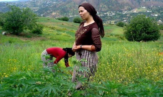 Dans le Maroc rural, les stéréotypes freinent la féminisation du ...